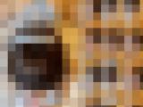 【極薄モザイク】さくらchan メイドコスでフェラチオ(9分4秒)